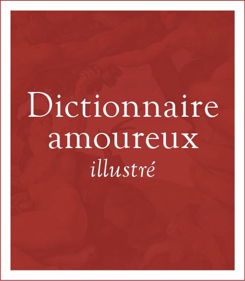 Dictionnaire amoureux illustré