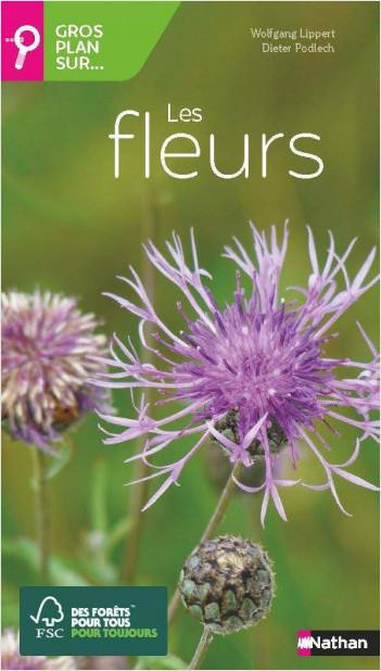 Gros plan sur les fleurs - Guide Nature