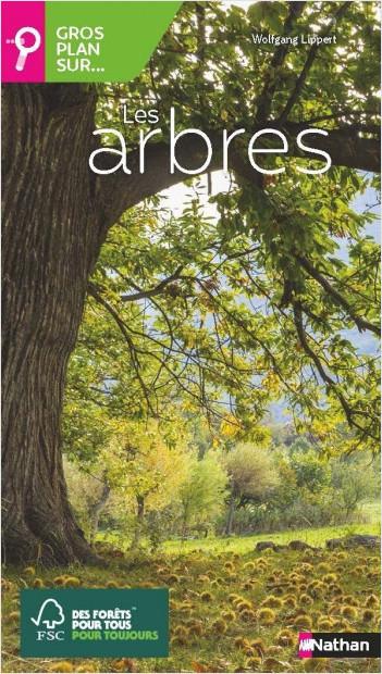 Gros plan sur les arbres - Guide nature