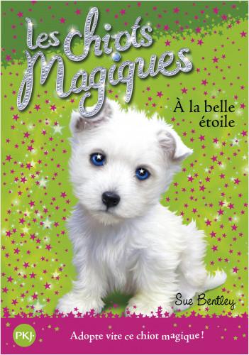 Les chiots magiques - tome 06 : À la belle étoile