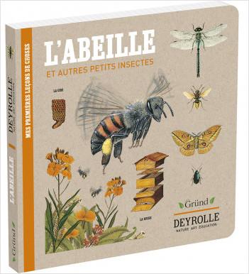 Deyrolle : L'abeille et autres petits insectes – Album documentaire Jeunesse – À partir de 3 ans