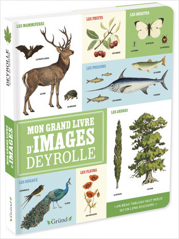 Mon grand livre d'images Deyrolle – Imagier grand format – À partir de 2 ans