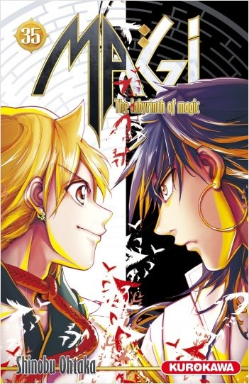 Magi - The Labyrinth of Magic - tome 35