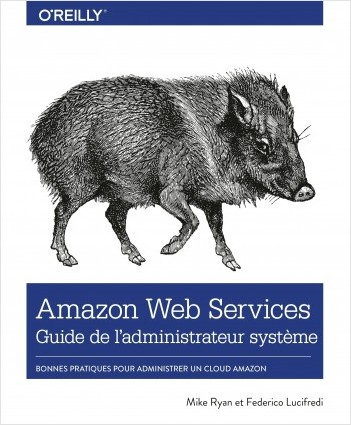 Amazon Web Service Guide de l'administrateur - Les bonnes pratiques pour administrer le cloud d'Amazon - collection O'Reilly
